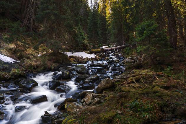 Вода в горном ручье размыта благодаря выдержке в 5 секунд