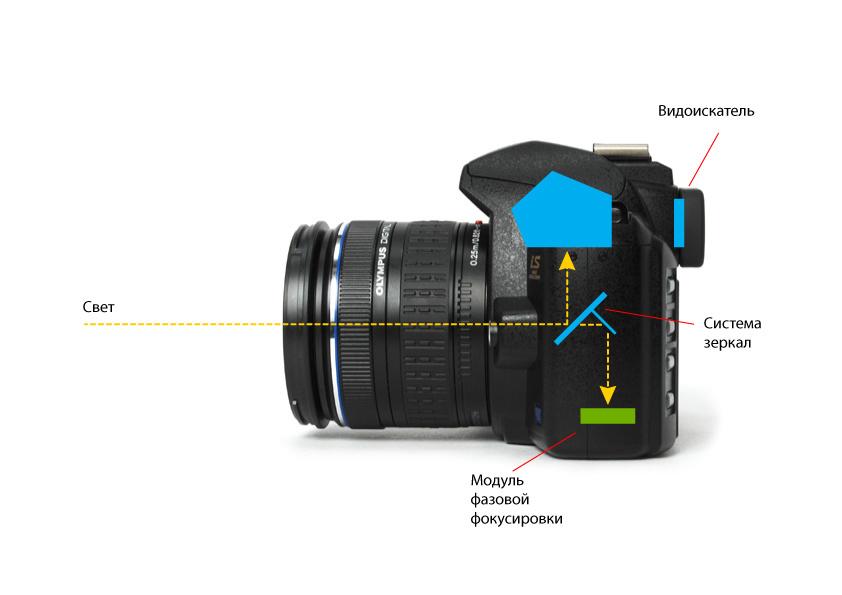 В чем разница обычных и зеркальных фотоаппаратов