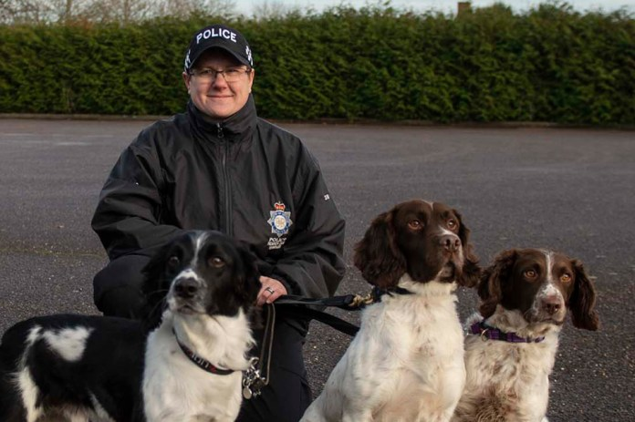 The MDP's first female Dog Training Instructor, Hannah, with police dogs