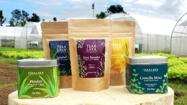 TEAS FOR SALE. Tea products come in different flavors. Photo from Tsaa Laya