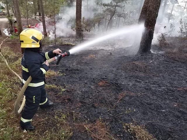 JOHN HAY. South Drive forest fire near John Hay. Photo courtesy of BFP Baguio