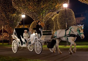 The Top Christmas Attractions In Upstate South Carolina