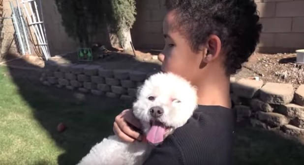 homeless dog rescued by little boy