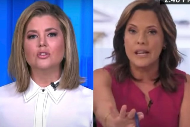 'Don't mess with my family' — CNN anchor lashes out at Mercedes Schlapp over accusations in her op-ed