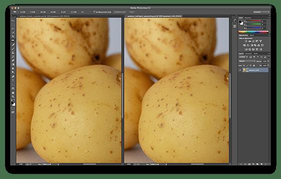 Potatoes_560