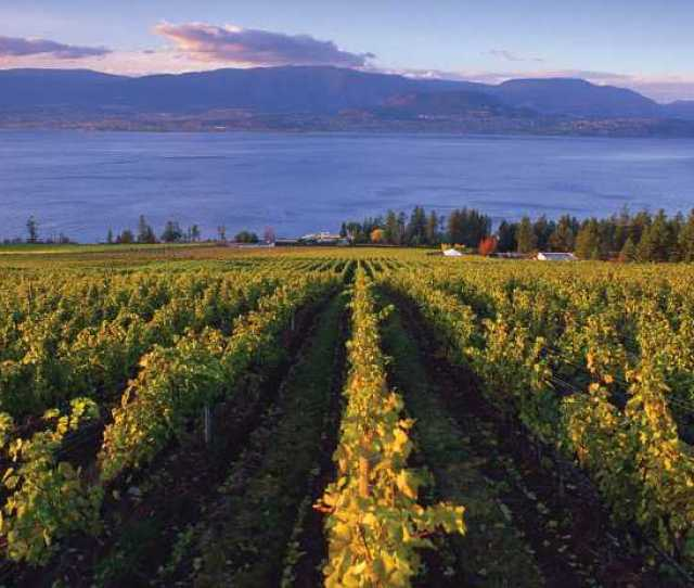 Bc Wine Country
