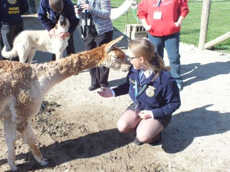 Where You Can Enjoy Animals In Central Indiana