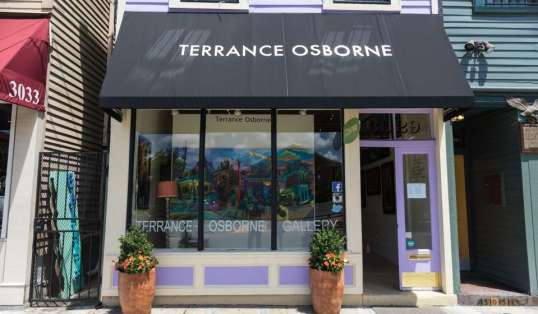 Image result for terrance osborne gallery new orleans