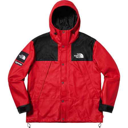 Supreme®/The North Face® Leather Mountain Parka (Red)