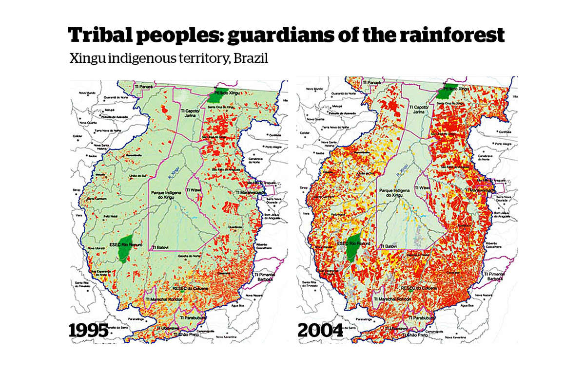 The Xingu indigenous park (outlined in pink) is home to several tribes. It provides a vital barrier to deforestation (in red) in the Brazilian Amazon.