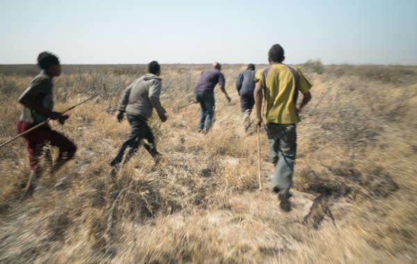 Bushmen are accused of poaching when they hunt to feed their families, while big-game trophy hunting tourists are encouraged