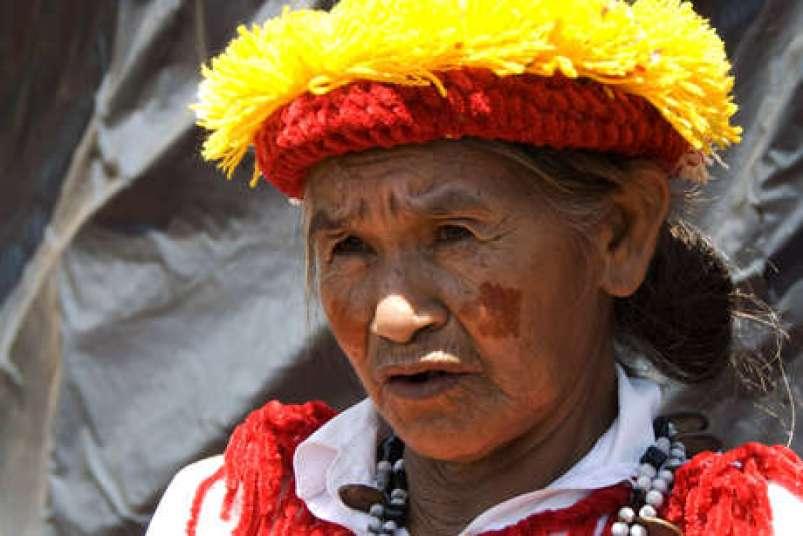 Guaraniwoman-original2_460_landscape