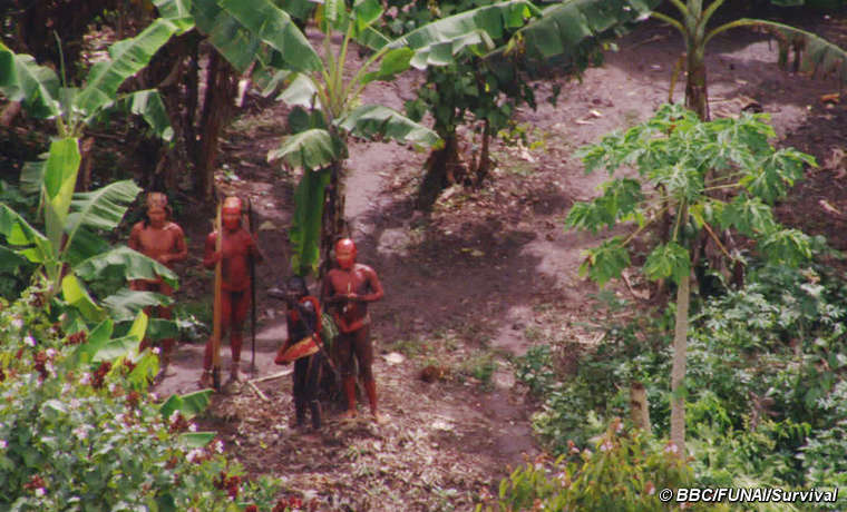 A still from the new footage of an uncontacted Amazon tribe in Brazil.