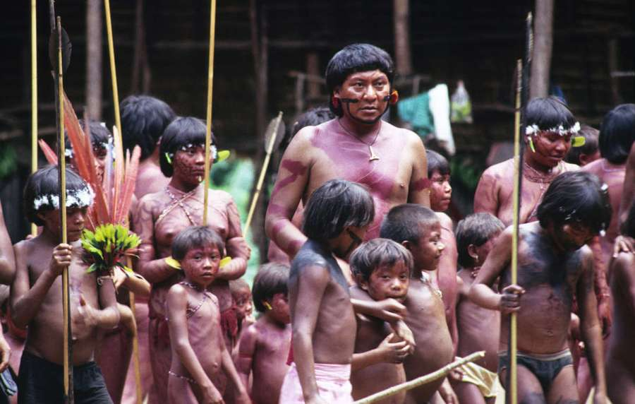 The Yanomami Tribe featured image