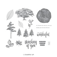 Rooted In Nature Clear-Mount Stamp Set
