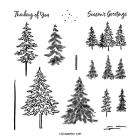 In The Pines Photopolymer Stamp Set
