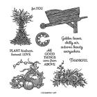 Autumn Goodness Photopolymer Stamp Set