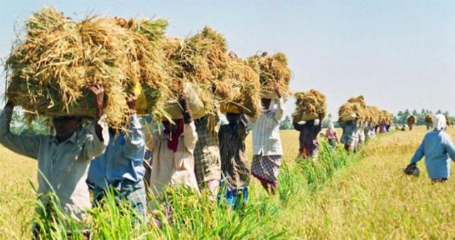 One Zero Based Natural Farming farmer for every village stressed
