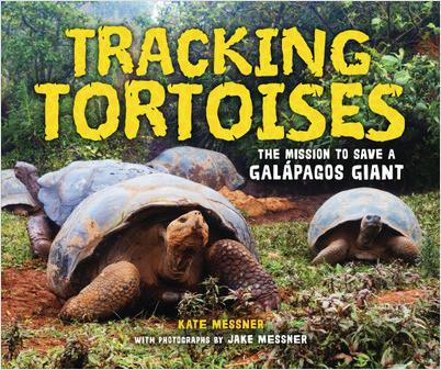 Tracking Tortoises