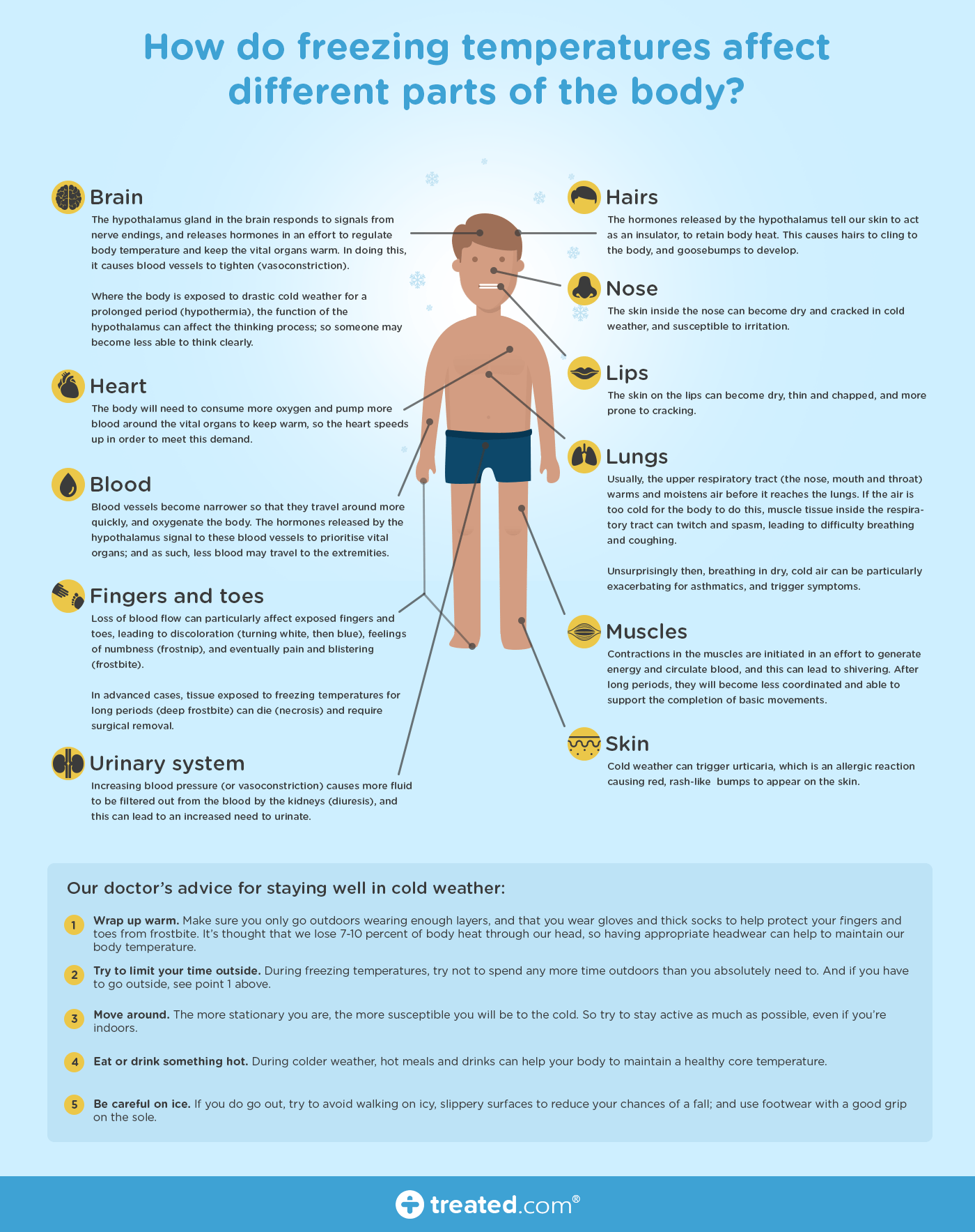 Infographic How Do Freezing Temperatures Affect Different