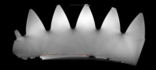An example from the CT scan showing a subsurface crack propagating from the right hand spalling. The red color is a frame-by-frame mapping performed by hand to highlight the crack. University of Southampton Photo