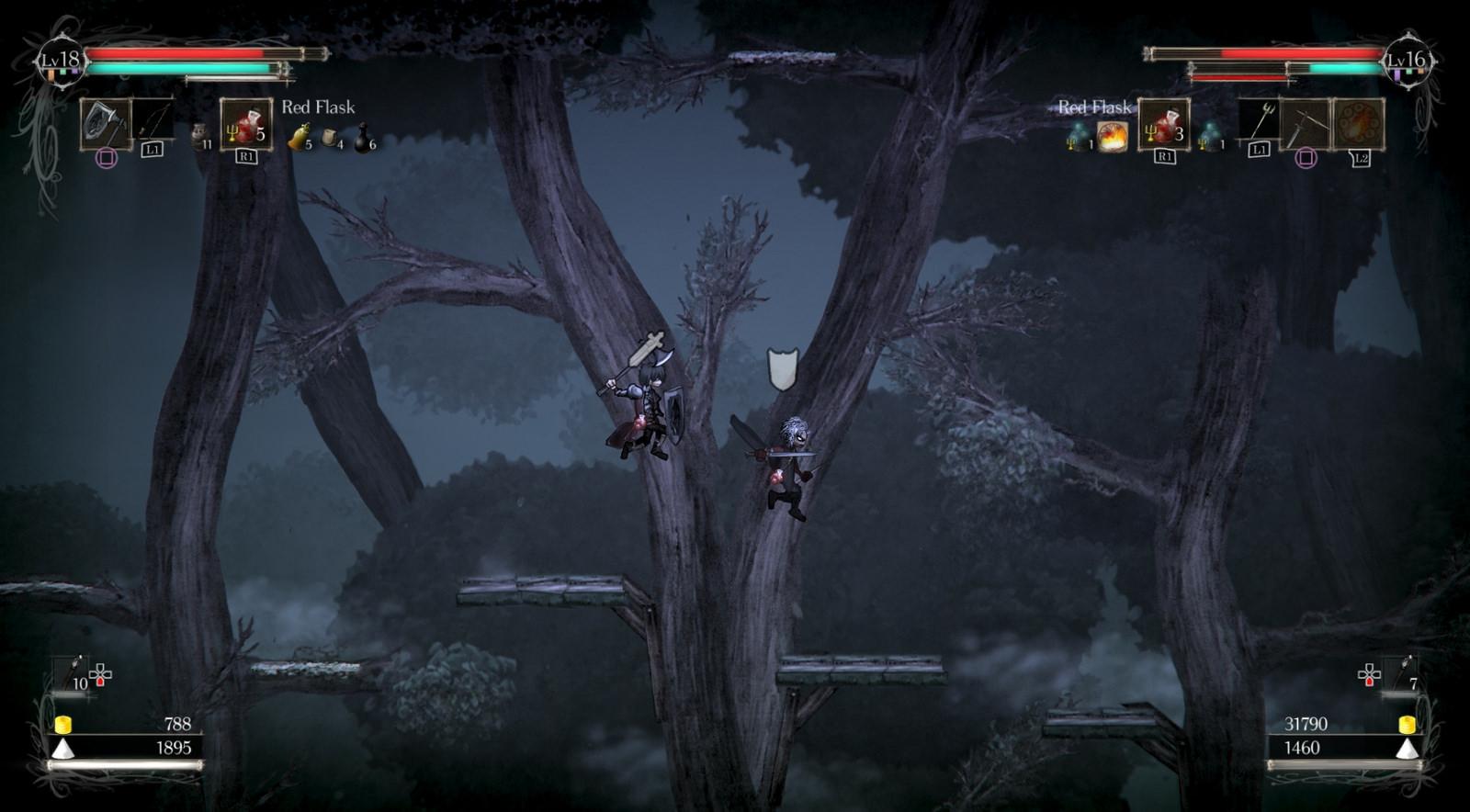 Heres How Co Op Works In Souls Like 2D Platformer Salt And Sanctuary VG247