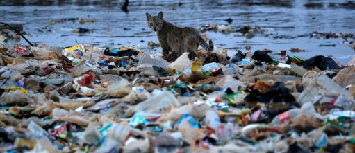 Here's how Indonesia plans to tackle its plastic pollution problem ...