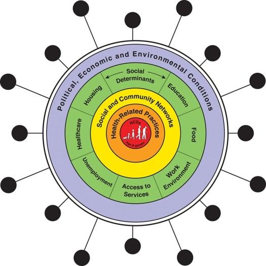 A sindemia de COVID-19, doenças não transmissíveis (DCNT) e os determinantes sociais da saúde (adaptado de Singer e Dahlgren e Whitehead).
