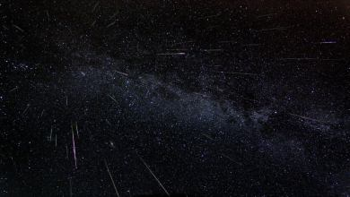 The Dazzling Lyrid Meteor Shower Starts Tomorrow. Here's How to Watch It