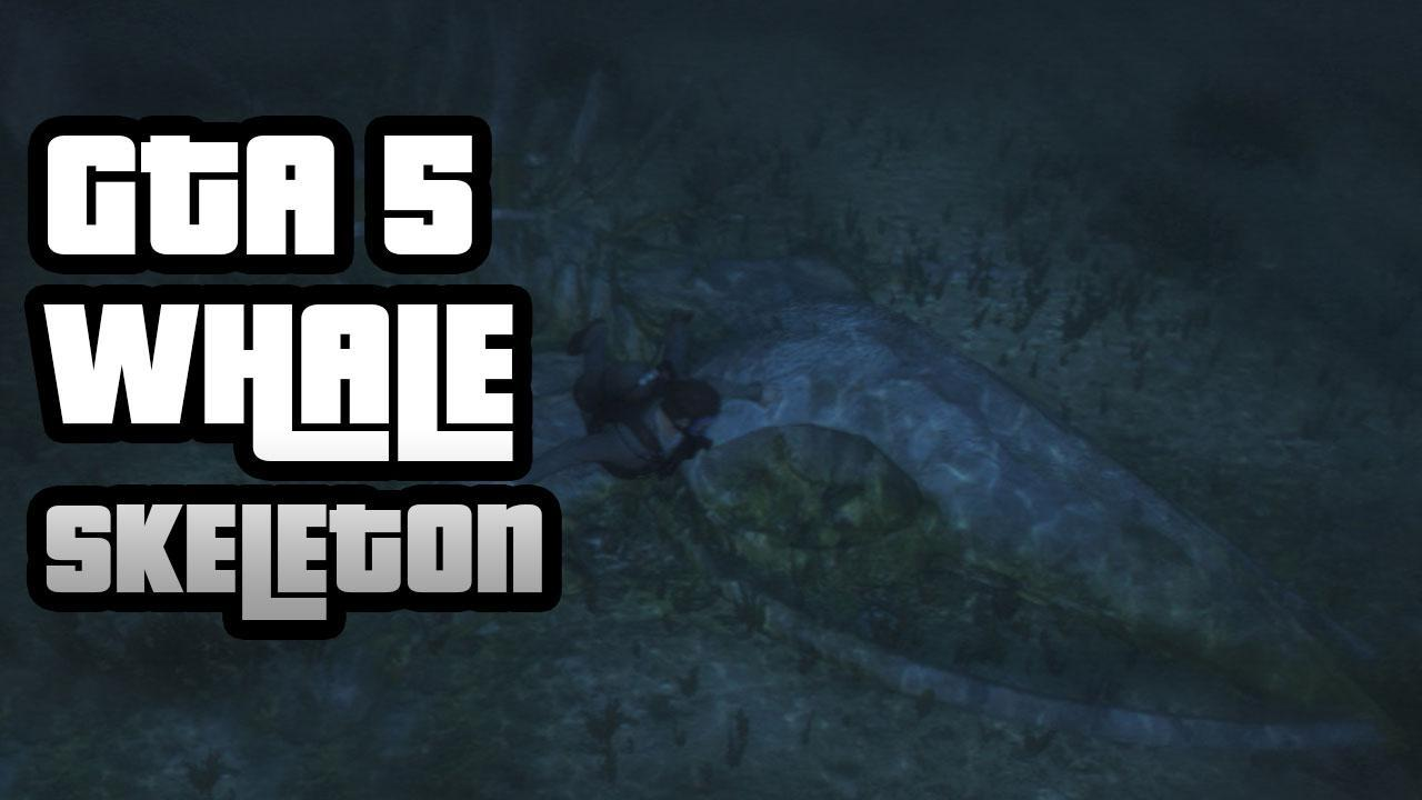 GTA 5 How To Find The Sea Monster Aka Whale Skeleton IGN Video