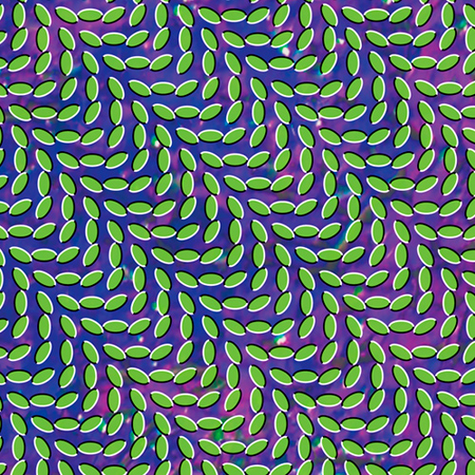 Animal Collective Unveil Trippy <i>Merriweather</i> Cover