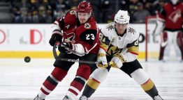 Image result for erik ekman larsson