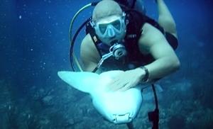 $15 for One Discover Scuba Diving Intro Class at Maximum Scuba ($95 Value)