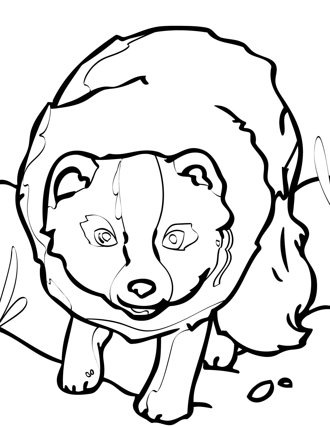 arctic fox coloring page handipoints