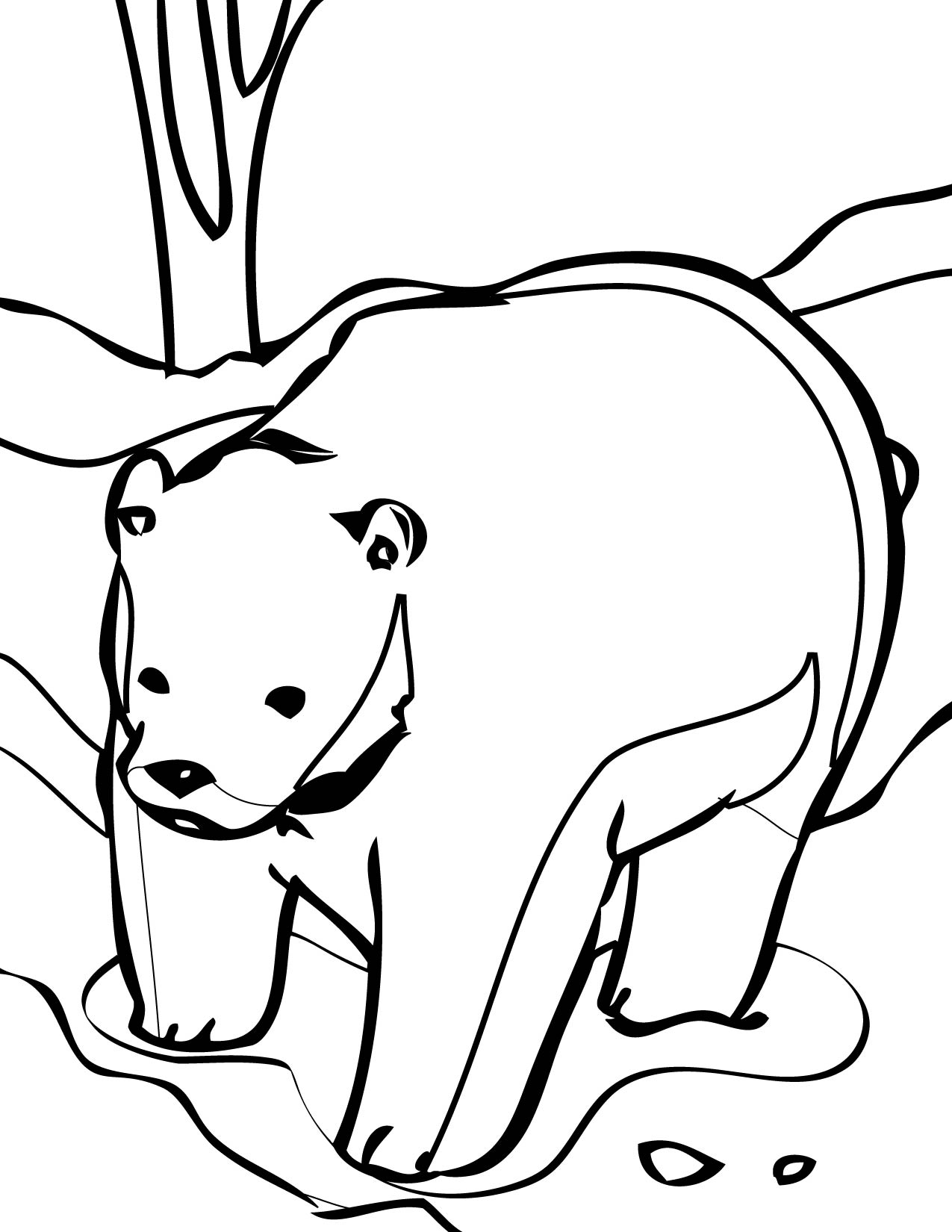 brown bear coloring page handipoints
