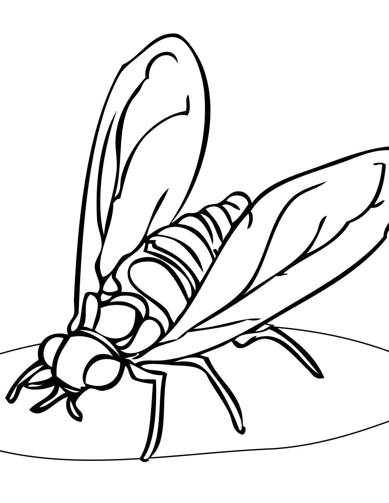 print this page helpful insects coloring pages coloring pages