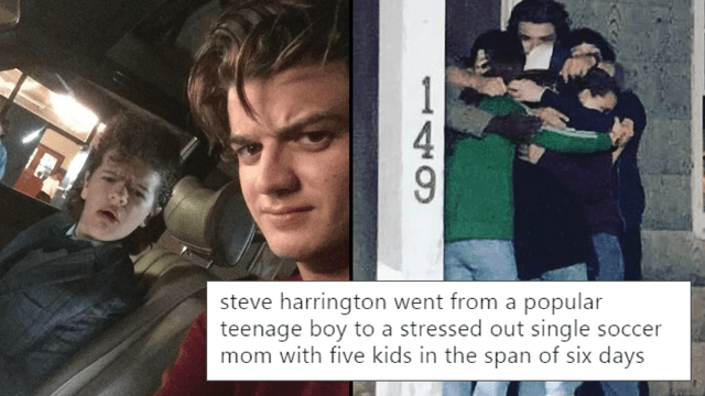 Image result for steve harrington memes