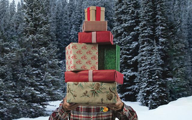 santas wonderland gift registry