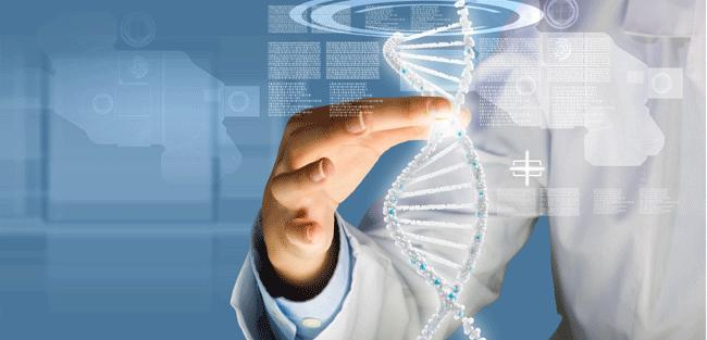 Processamento massivo de informações pode ajudar médicos a indicarem tratamentos mais personalizados