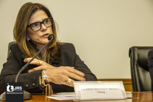 Solange Beatriz Palheiro Mendes, presidente da FenaSaúde.