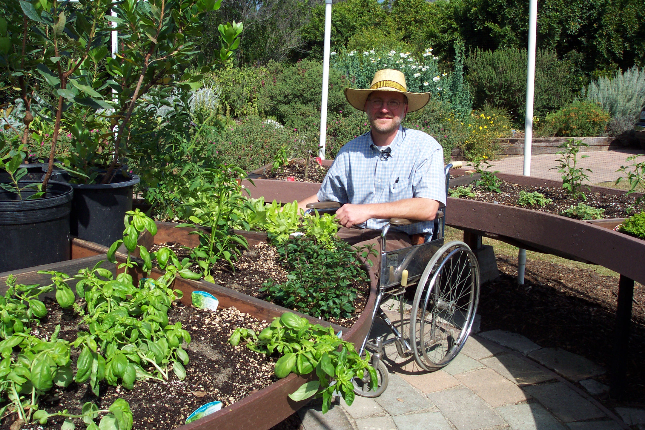 5 Ways To Make A Wheelchair Accessible Garden Assistive