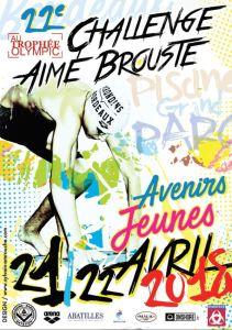 22ème Challenge Aimé Brouste @ Piscine du Grand Parc | Bordeaux | Aquitaine | France