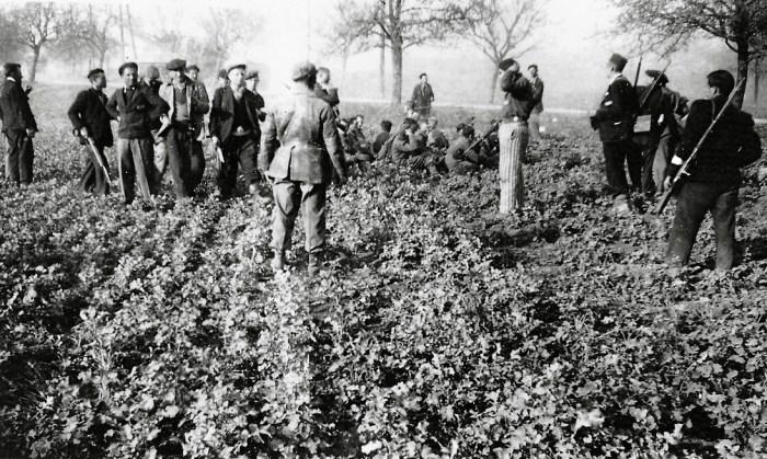 •Photographie de déportés politiques ayant fait des prisonniers le 11 avril 1945 © AFBDK