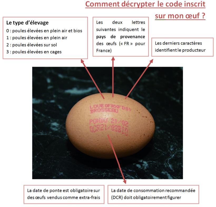 Oeuf Code