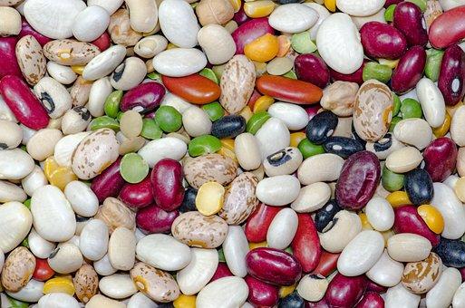 Haricot rouge vs haricot azuki : quelles différences ?