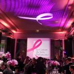 Octobre rose 2015_le cancer du sein, parlons-en (14)