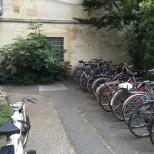 association-pierre-favre-projet-jardin-bergonie-avant4