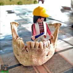 Modwene est en mission à Mentesh Tepe en Azerbaïdjan, avec une équipe française financée par le Ministère des affaires étrangères et l'ANR dirigée par Bertille Lyonnet du collège de France • Il s'agit d'un tepe (site du à l'activité humaine en forme de monticule, résultant de l'accumulation de matières et de leur érosion sur une longue période) qui remonte au « Néo-Chalco-Bronze Ancien »