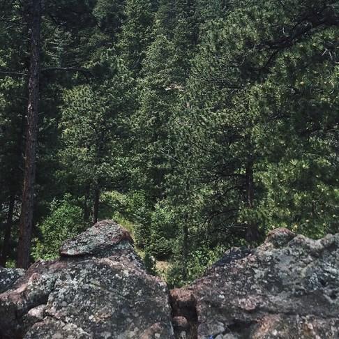 natural stone and vibrant greens
