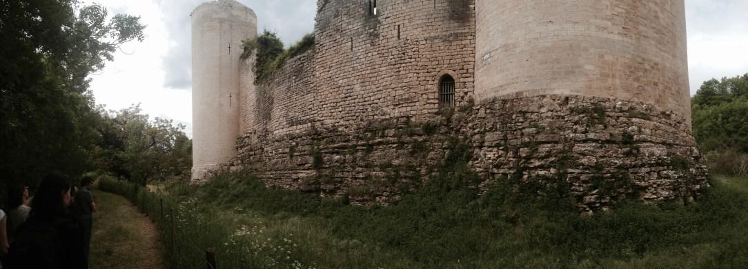 Château du Coudray-Salbart, Vue sur les douves sèches
